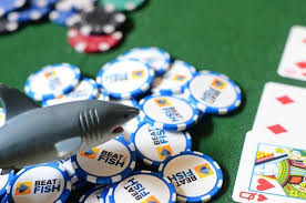 Playing the Right Poker Level – Beating the Fish